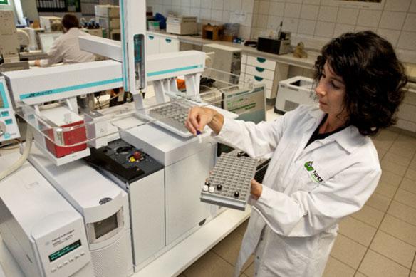 Analytik mit Gaschromatographie gekoppelt mit Massenspektrometrie (GCMS)